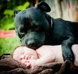 BABY & PROTECTOR
