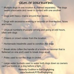 Dog Fighting Signs